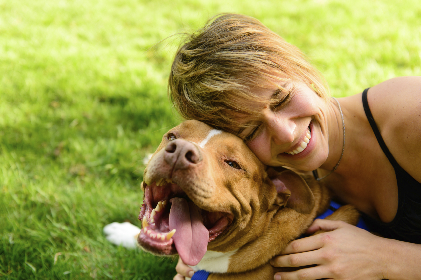 7 Grieving Remedies for Coping with Pet Loss